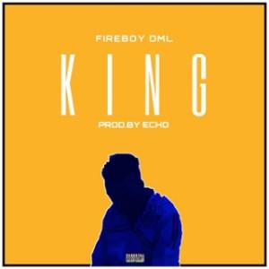 FireBoy DML - King